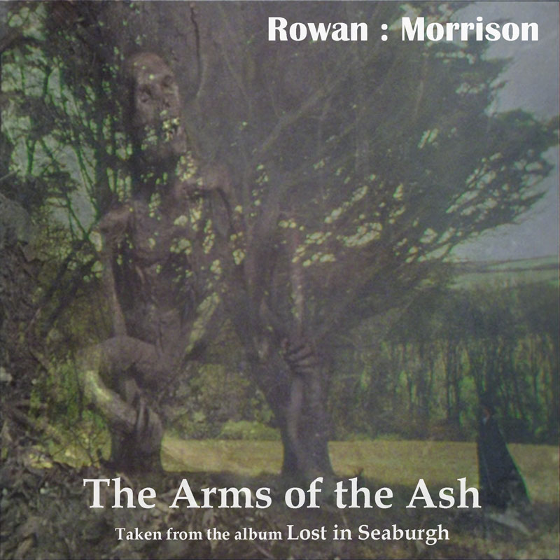 Rowan : Morrison The Arms of the Ash