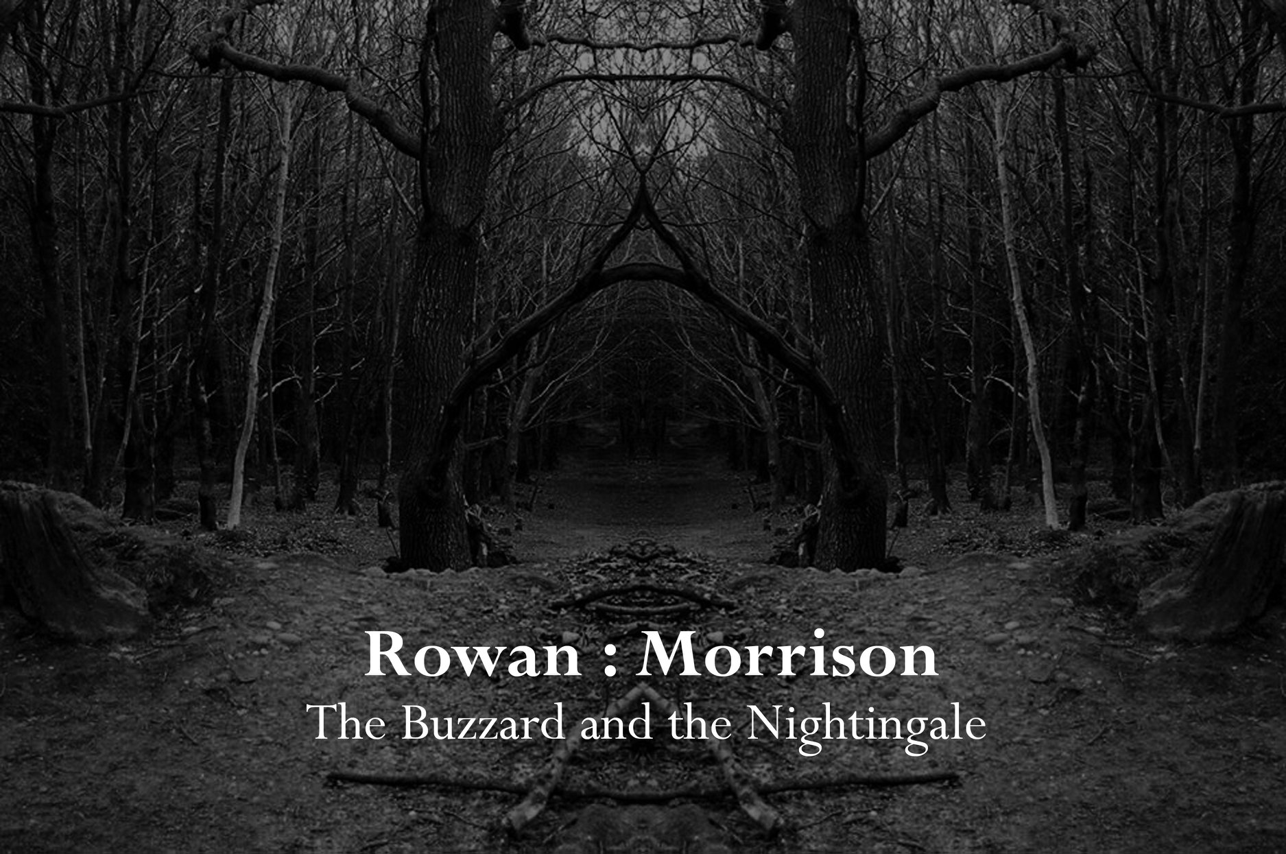 Rowan : Morrison The Buzzard and the Nightingale